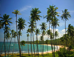 Luxury Holidays to Sri Lanka - Sri Lanka Luxury Holidays - Boutique and Luxury Hotels based Holidays in Sri Lanka - Sri Lanka Luxury Holidays - Luxury Holiday Sri Lanka - Luxury Tours Sri Lanka Luxuruy Tours with Hotels