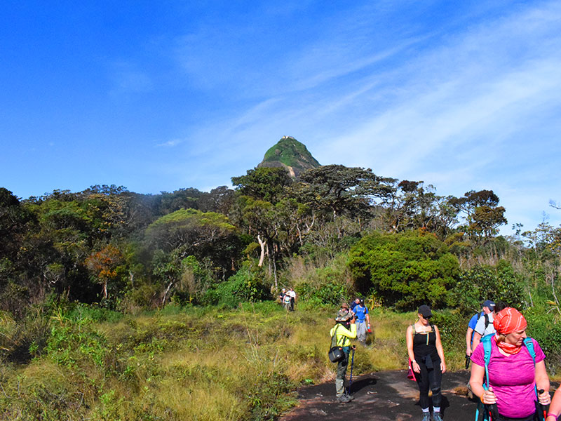Things to do in Adam's Peak - Top travel experiences in Adam's Peak - Hike to Adam's Peak