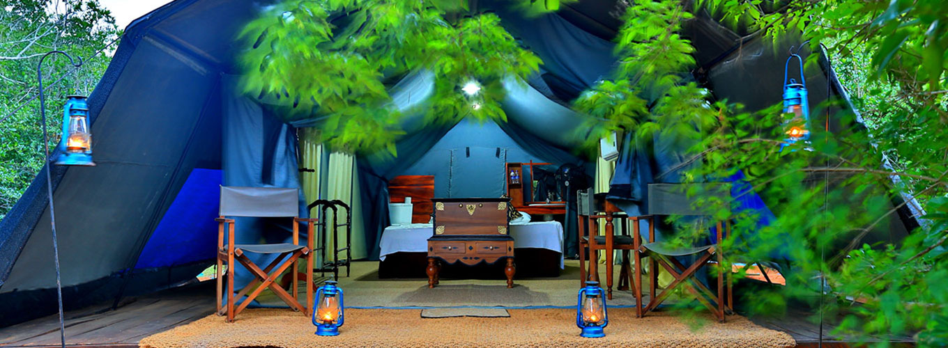 Tented Safari Camps in Sri Lanka - Tented Safari Camping in Sri Lanka - Tented Camping in Sri Lanka - Sri Lanka Teted Camping Experience