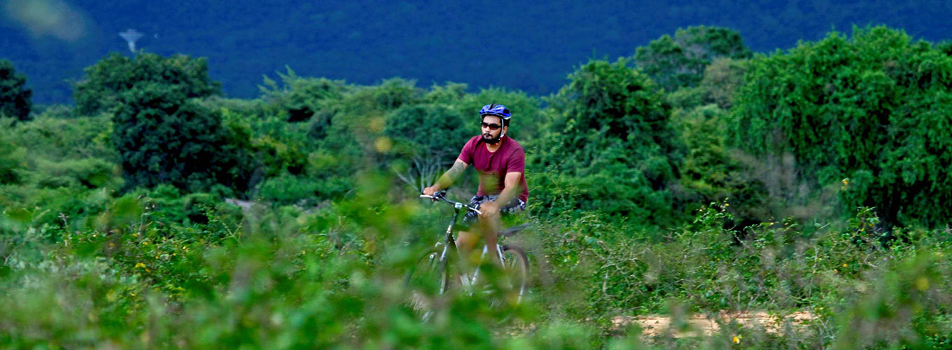 Cycling Tours in Yala - Cycle to Yala  - Cycling along the rural village