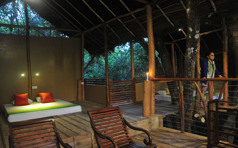 Tree House Stays in Sri Lanka - Stay in a Tree House Lodge in Sri Lanka - Tree Houses in Sri Lanka - Stay in Sri Lanka - Sri Lanka Tree Houses Experince